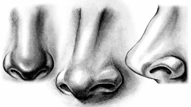 Basic Drawing Techniques screenshot 1