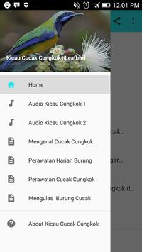 Kicau Cucak Cungkok ||Leafbird poster