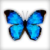 나비야넷 icon