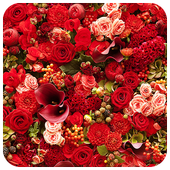 Blooming rose flowers puzzle icon