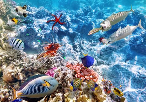Ocean Fantasy World Puzzle screenshot 3