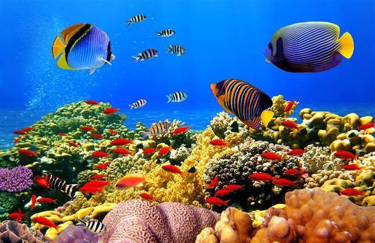 Ocean Fantasy World Puzzle poster