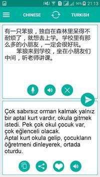 Turkish Chinese Translator poster