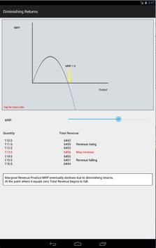 Economics 4 Tablet screenshot 5