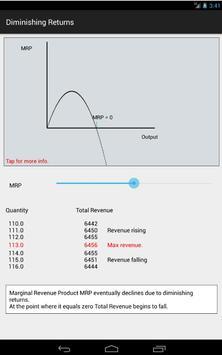 Economics 4 Tablet screenshot 13