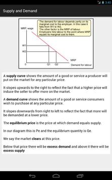 Economics 4 Tablet screenshot 12
