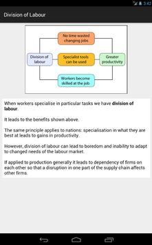 Economics 4 Tablet screenshot 14