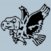 Hawks Pizza icon