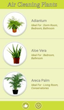 Air Cleaning Plants poster