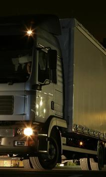 Themes MAN TGL Truck screenshot 1