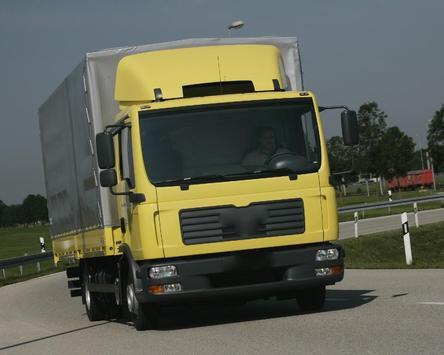 Themes MAN TGL Truck screenshot 4