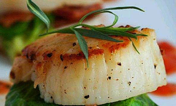How to Cook Scallops Recipes & Videos poster