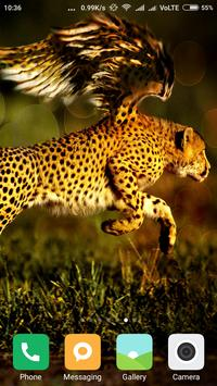HD Wild Animal Wallpapers poster