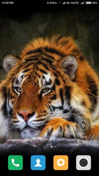 Wild Animal Wallpapers poster
