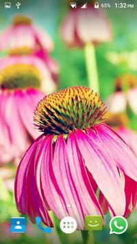 Flower Wallpaper screenshot 2
