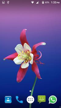 Flower Wallpaper screenshot 6