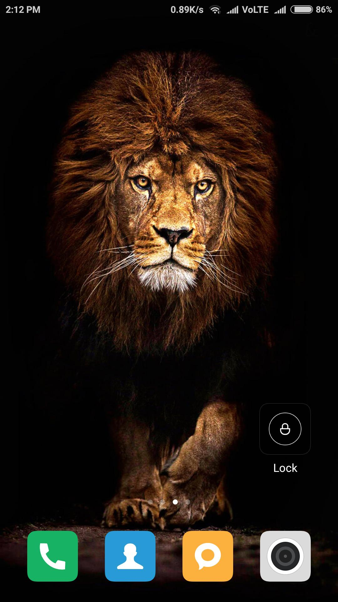 Hd Lion Wallpapers For Android Apk Download