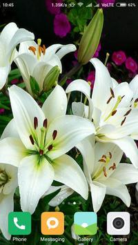 HD Lily Flower wallpaper screenshot 5