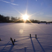 Cold Winter Morning Wallpapers icon