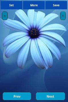 Blue Flowers Wallpapers poster