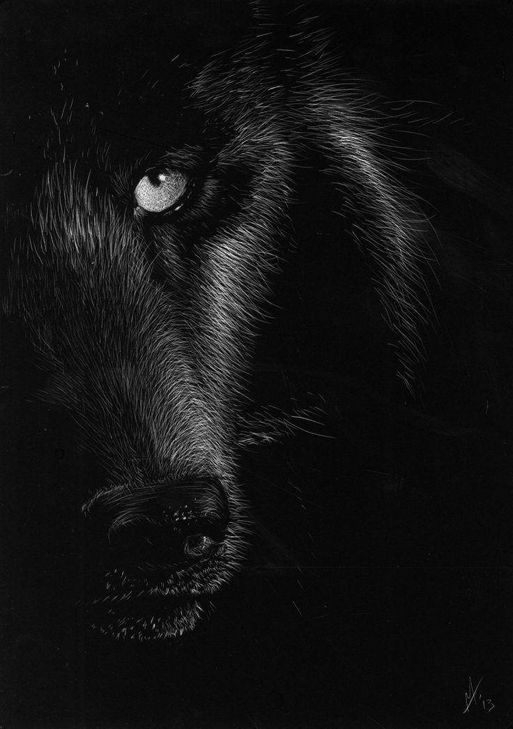 Cool Wolf Wallpapers For Android Apk Download