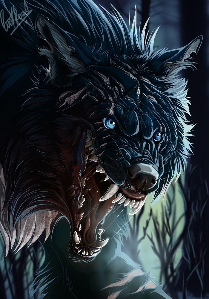 Cool Wolf Wallpapers for Android - APK Download