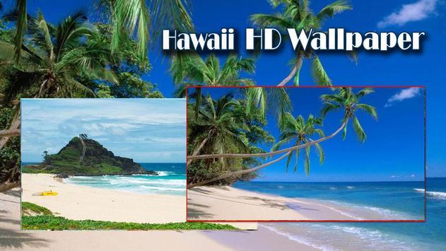 USA Hawai HD Wallpaper poster