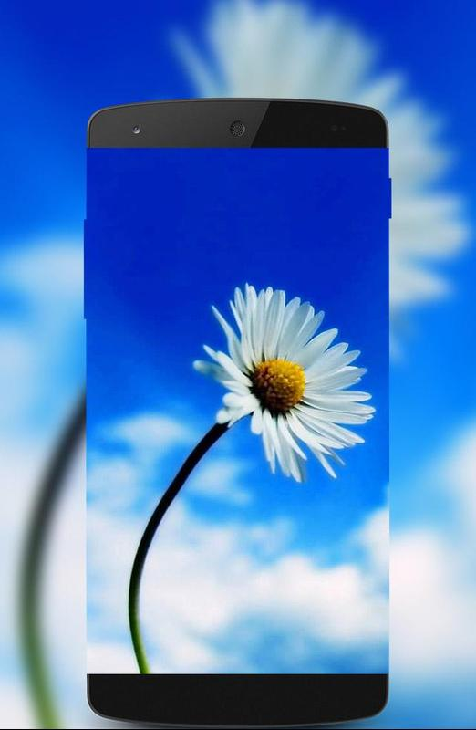 Free Mobile Wallpaper Hd 1080p For Android Apk Download