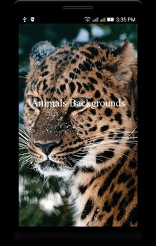 Animals Backgrounds poster