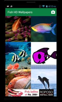 Fish HD Wallpaper screenshot 1
