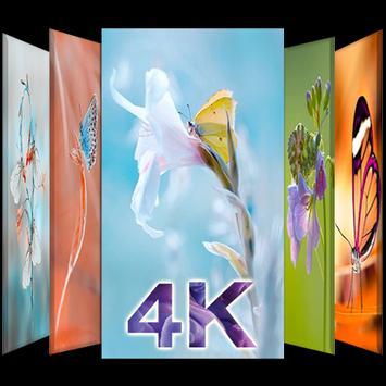 Wallpaper 4K Butterfly | HD Background screenshot 7