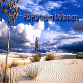HD HQ Desert Wallpapers icon