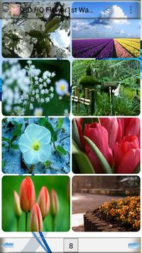 HD HQ Flower1st Wallpapers apk screenshot