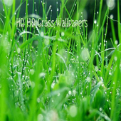 HD HQ Grass Wallpapers icon