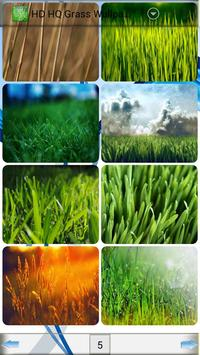 HD HQ Grass Wallpapers poster