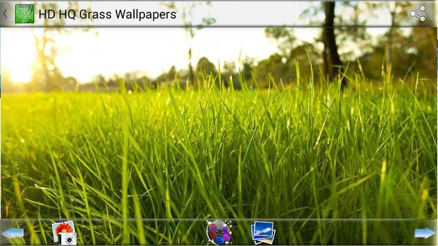 HD HQ Grass Wallpapers apk screenshot