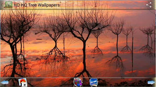 HD HQ Tree Wallpapers screenshot 6