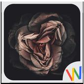 Black HD Wallpapers: Dark Background icon
