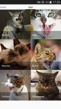 Cats sounds screenshot 3