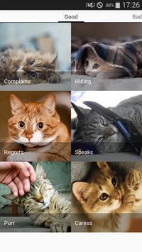 Cats sounds screenshot 5