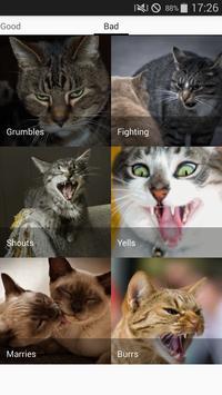 Cats sounds screenshot 6