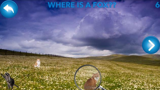 Find animals - look for cats screenshot 3