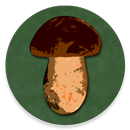 Book of Mushrooms APK Android