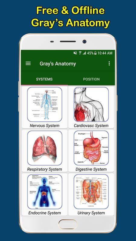 Gray S Anatomy Atlas Free Offline Poster