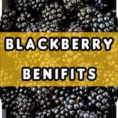 Blackberry Benefits icon