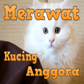 Kenali Cara Merawat Kucing Anggora Kesayangan Anda icon