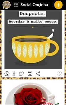 Social Onçinha poster
