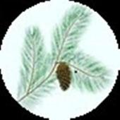 Heaven Kashmir icon