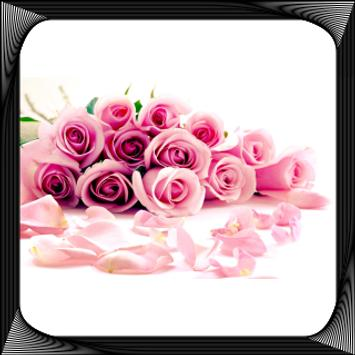 Flower Wallpapers For Chat apk screenshot