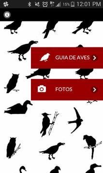 Birds of the Retiro park poster